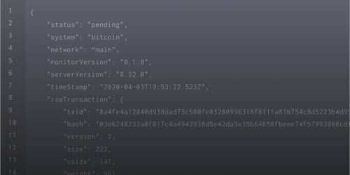 A Snippet of Notify's Bitcoin Payload